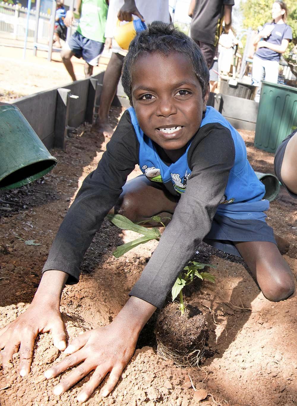Belyuen school student Jon Jon Singh plants aibika as part of the project.