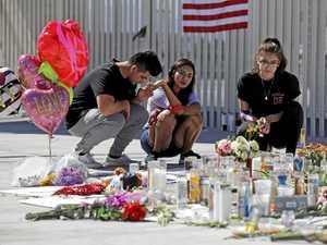 Change in gun law unlikely