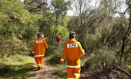 Emergency service crews search bushland at Urquhart Bluff near Aireys Inlet today for Elisa Curry. Picture: Alison WyndSource:News Corp Australia
