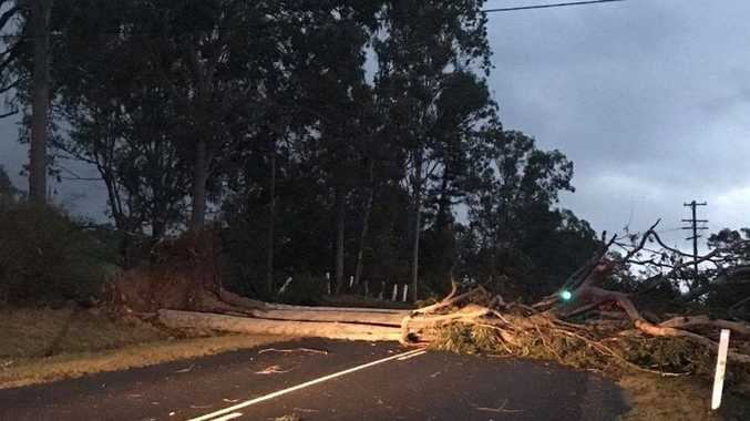 A fallen tree and power lines block Eatonsville Road after a storm lashed the area at about 5.30pm on Friday, 6th October, 2017.