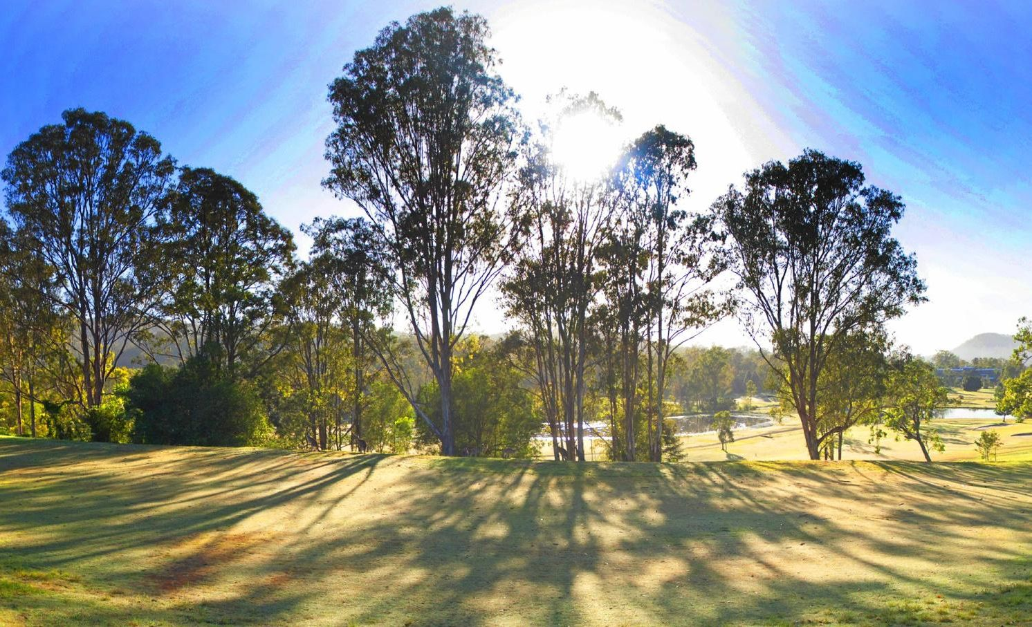 The golf course at the Ramada Resort Kooralbyn Valley.