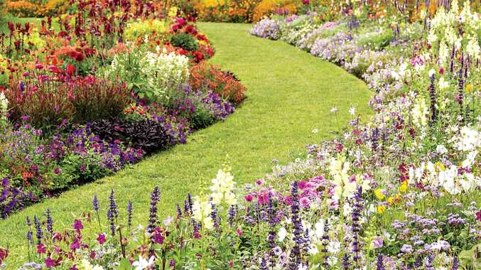 Inject colour into your garden with flowers set to bloom this season.