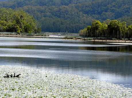 Rocky Creek Dam.