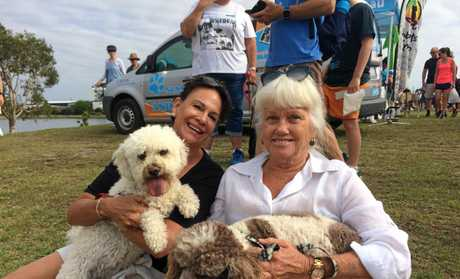 Brightwater resident Julie-Anne Spilios (left) with her dog Bella and Kawana Island resident Carol Darbyshire with her dog Gigi.