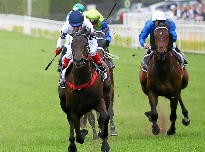 IN ACTION: Jockey Dean Yendall on Yankee Rose (centre), won the Spring Champion Stakes last October.