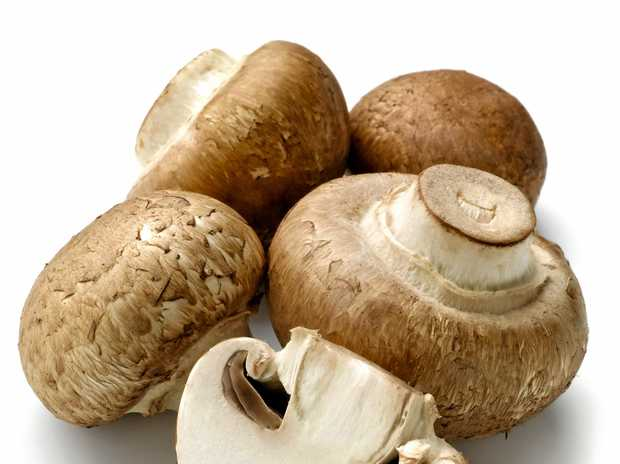 Brisbane Market supplier Troy Marland and his company, Marland Mushrooms Qld Pty Ltd, are on trial in the Federal Court in Brisbane for allegedly under-paying 406 workers $646,000 in 2014.