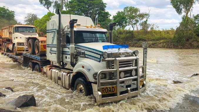 A plucky saltie has had a crack at a Mack truck as the Boss of the River showed the King of the Road who's who