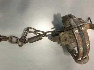 Cruel trap set in spot popular with children