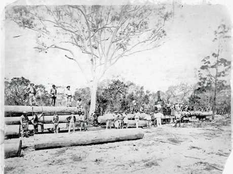 The day after the opening of the Cooloola Railway, 1873.Attribution: Courtesy Elaine Brown