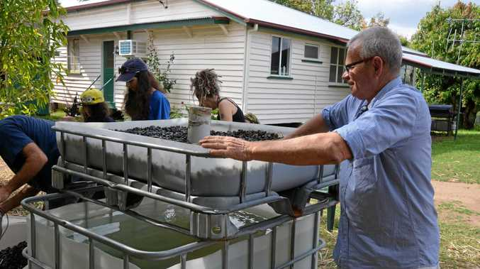 NEW ADDITION: Michael Higginson with some helping hands helped install the new aquaponic garden bed.