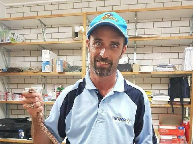 Ben Hansen wrangles snakes for a living.