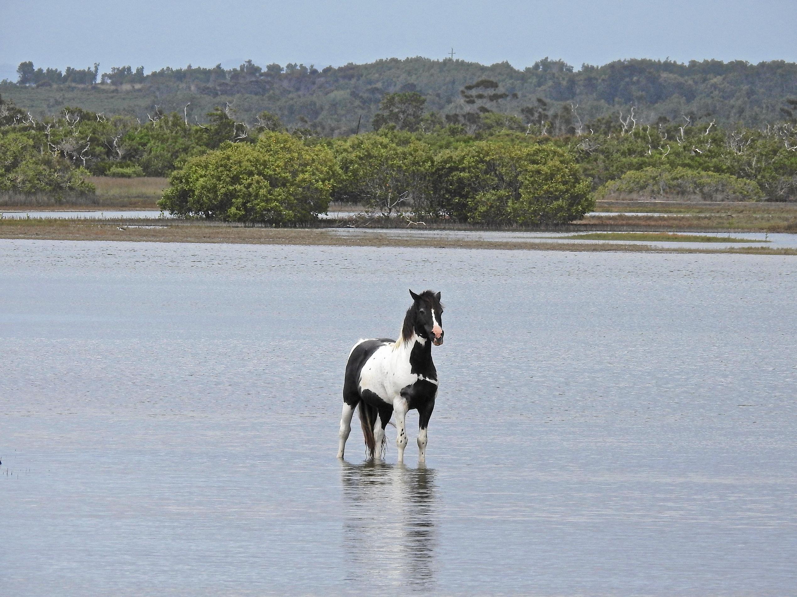 ABOVE: Cooling off at Lake Cakora.