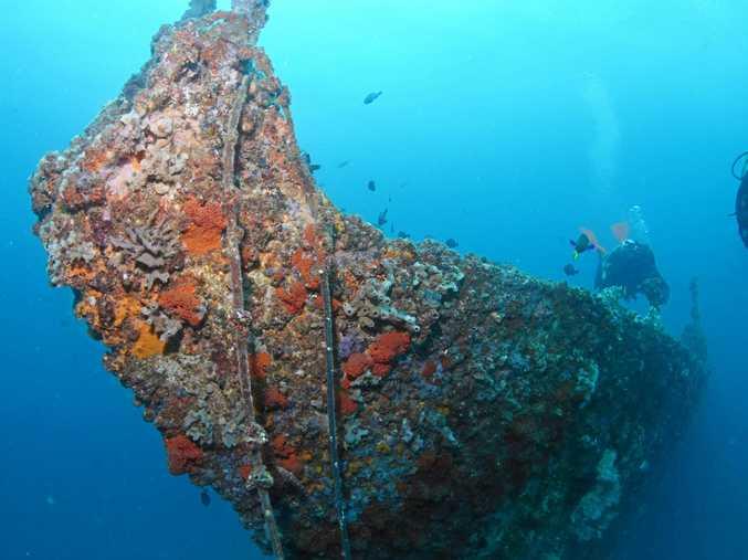 MAN-MADE WONDER: The bow of ex-HMAS Brisbane.