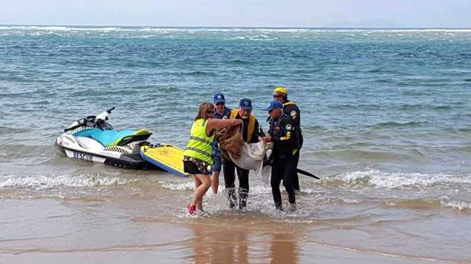 ROO RESCUE: Marine Rescue Nambucca Heads teams up with WIRES to rescue a stricken kangaroo from the surf at South Beach on Tuesday.