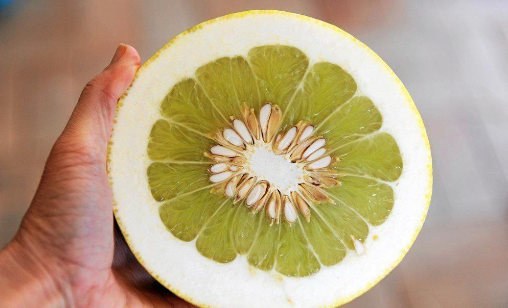 Pomelos are rich in vitamin C, fibre and antioxidants. PHOTO: KATE O'NEILL