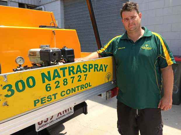 WARNING: Natraspray owner Sheldon Cosford is helping Gladstone deal with the growing spider numbers.