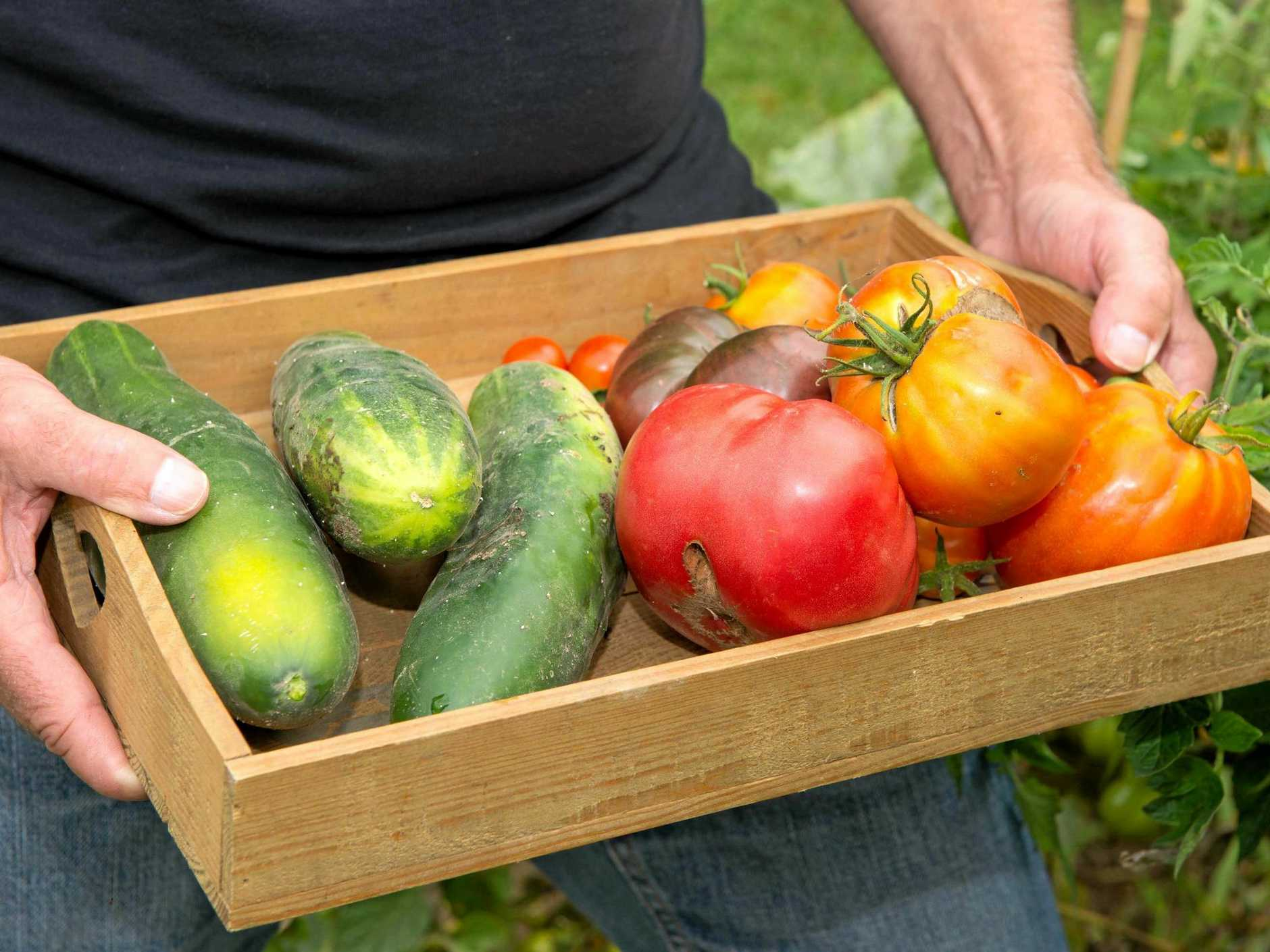 A small wooden crate with vegetables from the farmers markets.