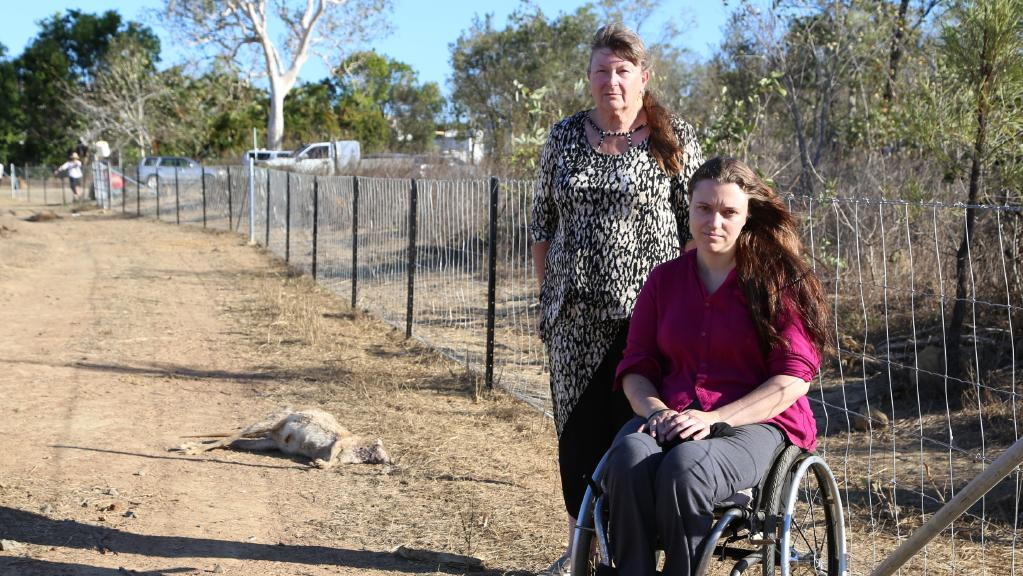 Tablelands Wildlife Rescue Inc carer Olive Needham and president Marjory Adkins are disturbed by the amount of wallabies, kangaroos and joeys found dead at the end of Hales Street, Mareeba.