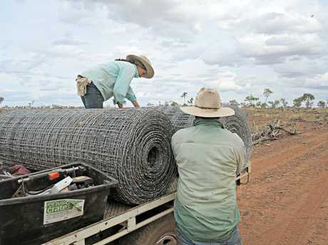 HELPING HAND : Zara and her father Jeffrey Agar installing more than 40km of exclusion fence as part of the Wyandra Cluster.
