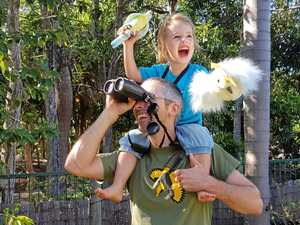 FLIGHT OF FANCY: BirdLife Australia's Dr Golo Maurer enjoys taking his children birdwatching.