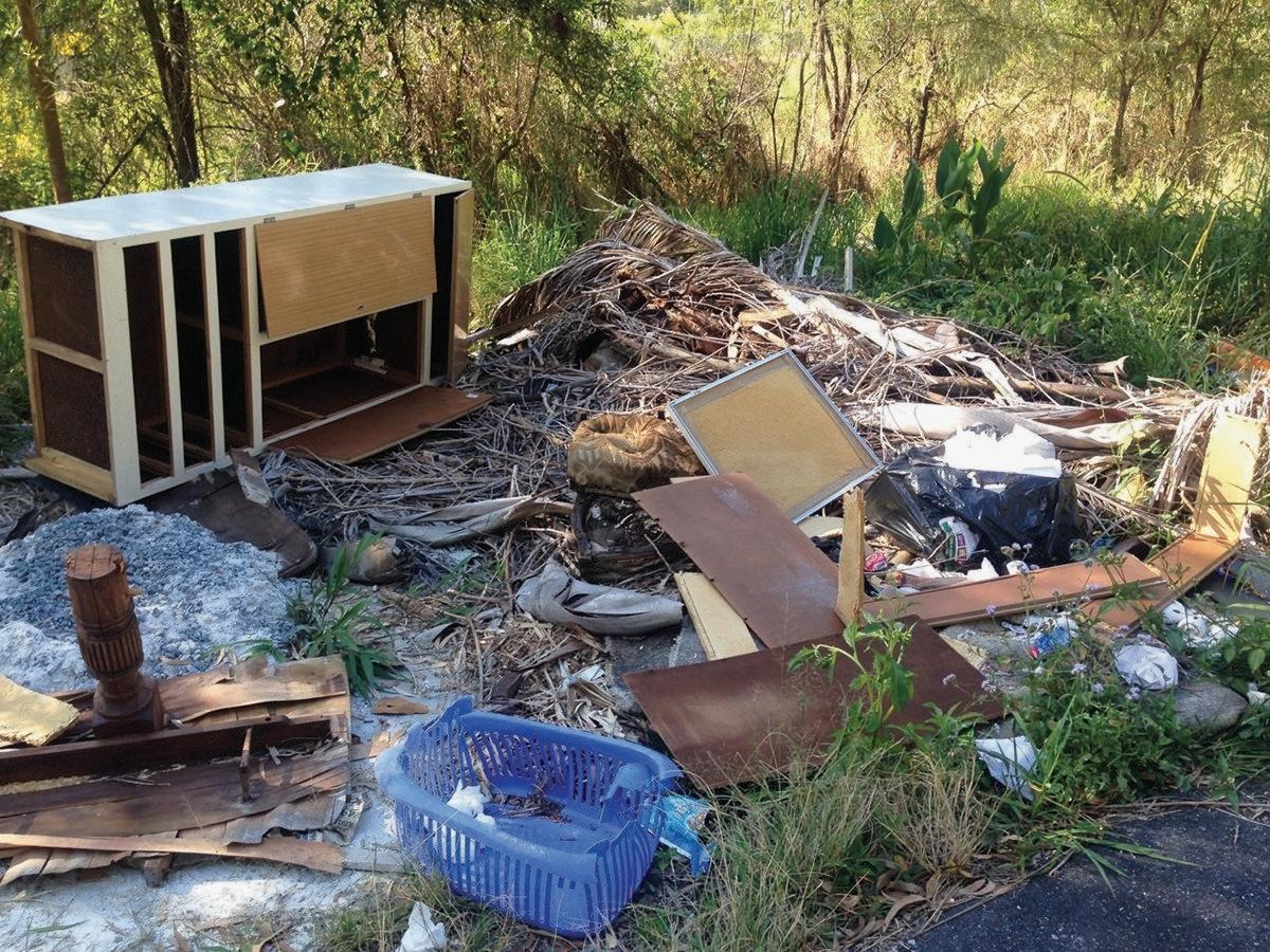 Illegal dumping is a problem for local councils.