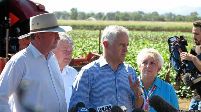 ROOKWOOD READY: Deputy PM Barnaby Joyce (left), MP Ken O'Dowd, Prime Minister Malcolm Turnbull and Michelle Landry MP at the Rookwood Weir announcement.