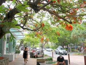 Council's plan to tackle Noosa's parking woes