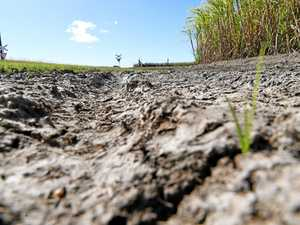 Rainfall may not break Fraser Coast's drought: DAF