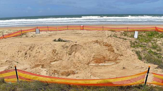 A POPULAR Wurtulla surfing spot just 200m from a patrolled beach was never an appropriate choice for the haphazard burial of a humpback whale.