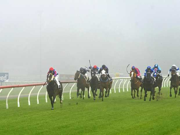 Mishani Seeka and jockey Mark Pegus heading for victory in tonight's Class 1 Handicap at a fog-shrouded Clifford Park.