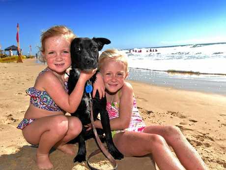Enjoying the weather on Marcoola BeachAyla,5, and Marli,7, Halliday with their puppy Geegee.