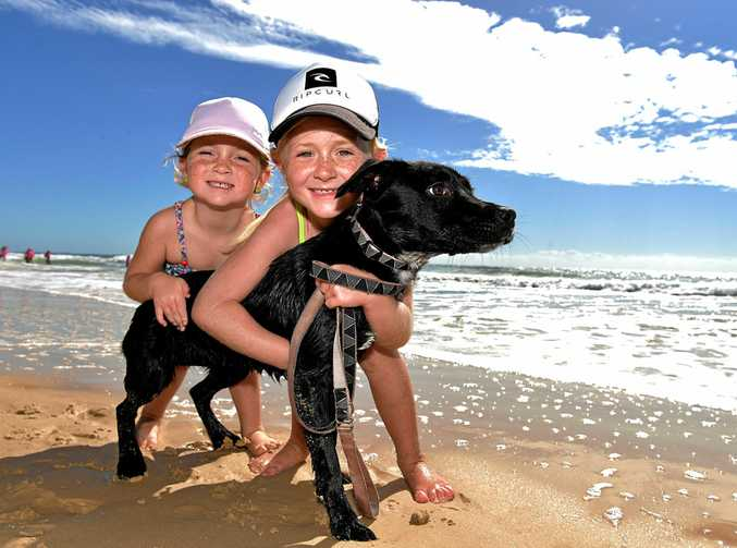 Enjoying the weather on Marcoola BeachAyla,5, and Marli,7, Halliday with their puppy Geegee.