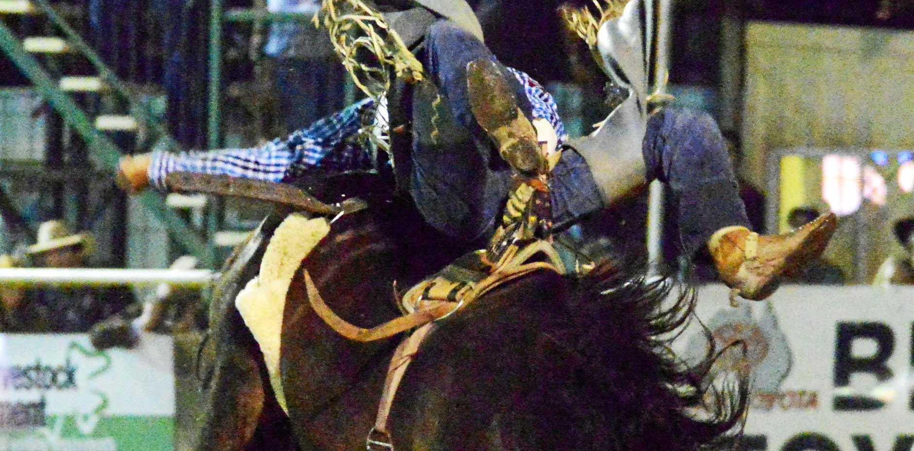 Australian Champion Fred Osman riding Gill Bros 427 at Warwick Rodeo 2016. Photo: Kenyon Sports Photos