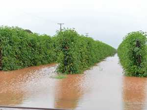 Disaster funds available for flood-affected farmers, families