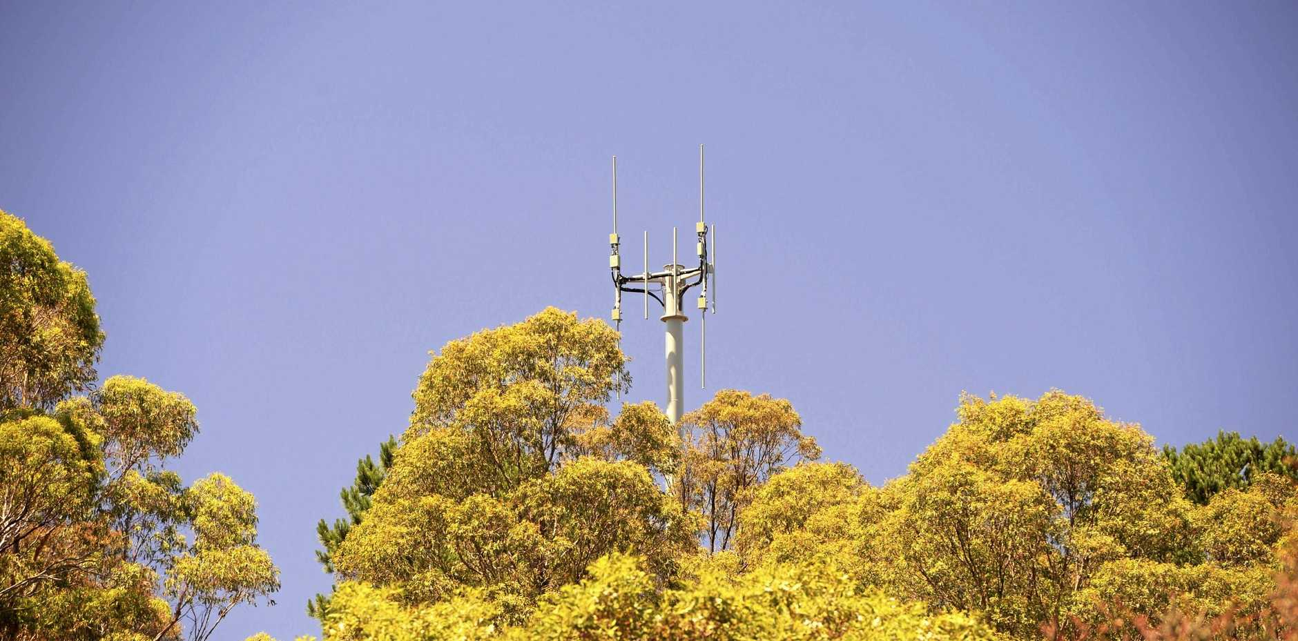 The ACCC has ruled against introducing domestic roaming to allow phone rivals to access each other's networks.