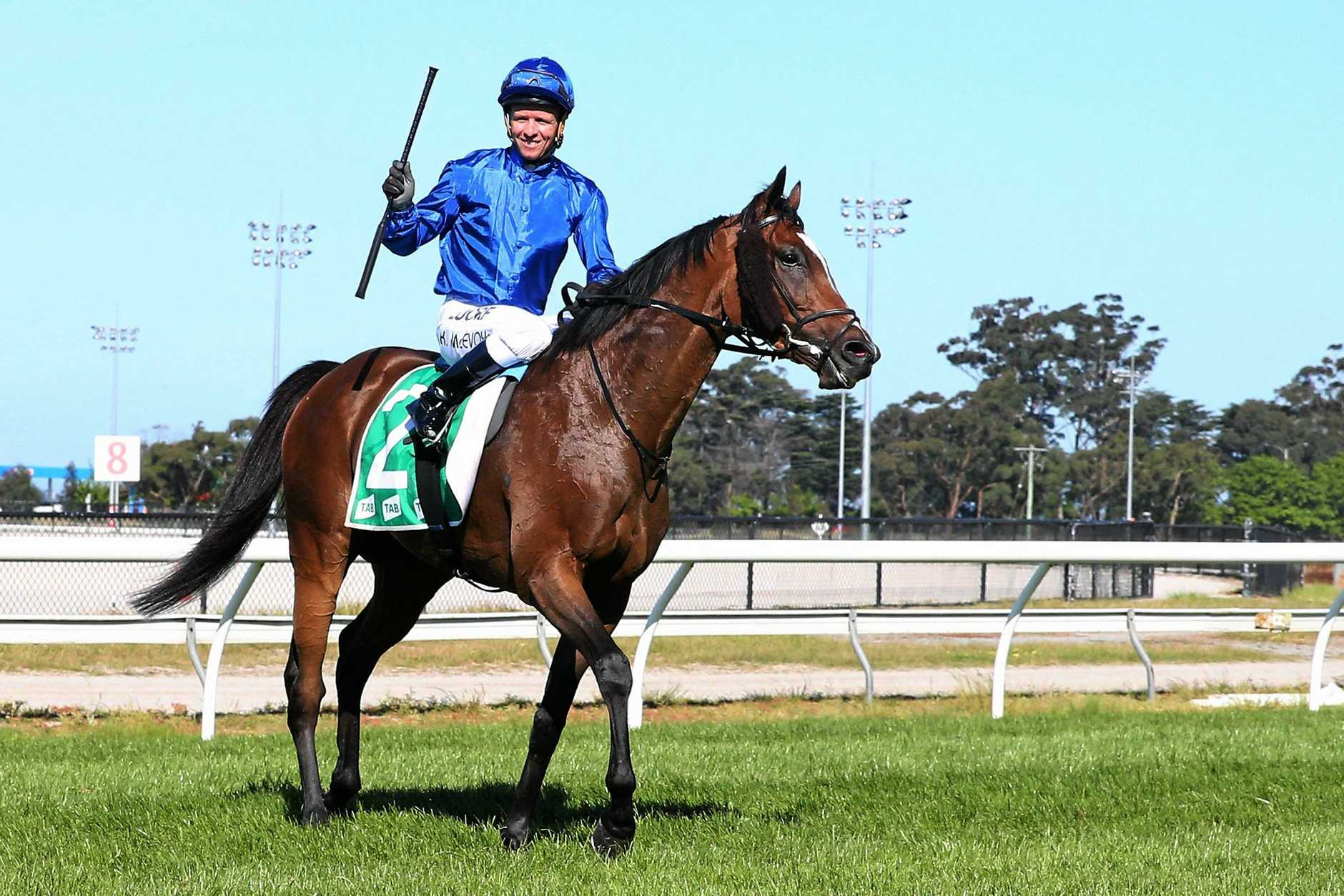 Folkswood is set to challenge Winx in the Cox Plate.