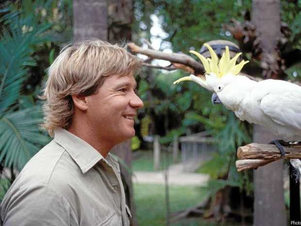 MEMORY LIVES ON: Steve Irwin's legacy is celebrated every year.