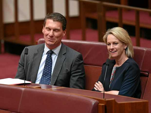 UNDER CLOUD: Deputy Nationals Leader Fiona Nash (right) has told the Senate she is a dual British citizen and is now waiting on the High Court's decision as to whether she was eligible for election.