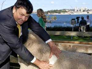 Australian Wool Innovation chairman apologises for man-in-the-mirror scandal