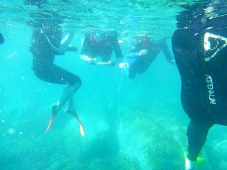 UNDERWATER CLASSROOM: Students collect data on reef health while snorkelling.