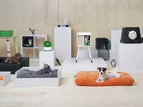 IKEA has also released a range of pet furniture.