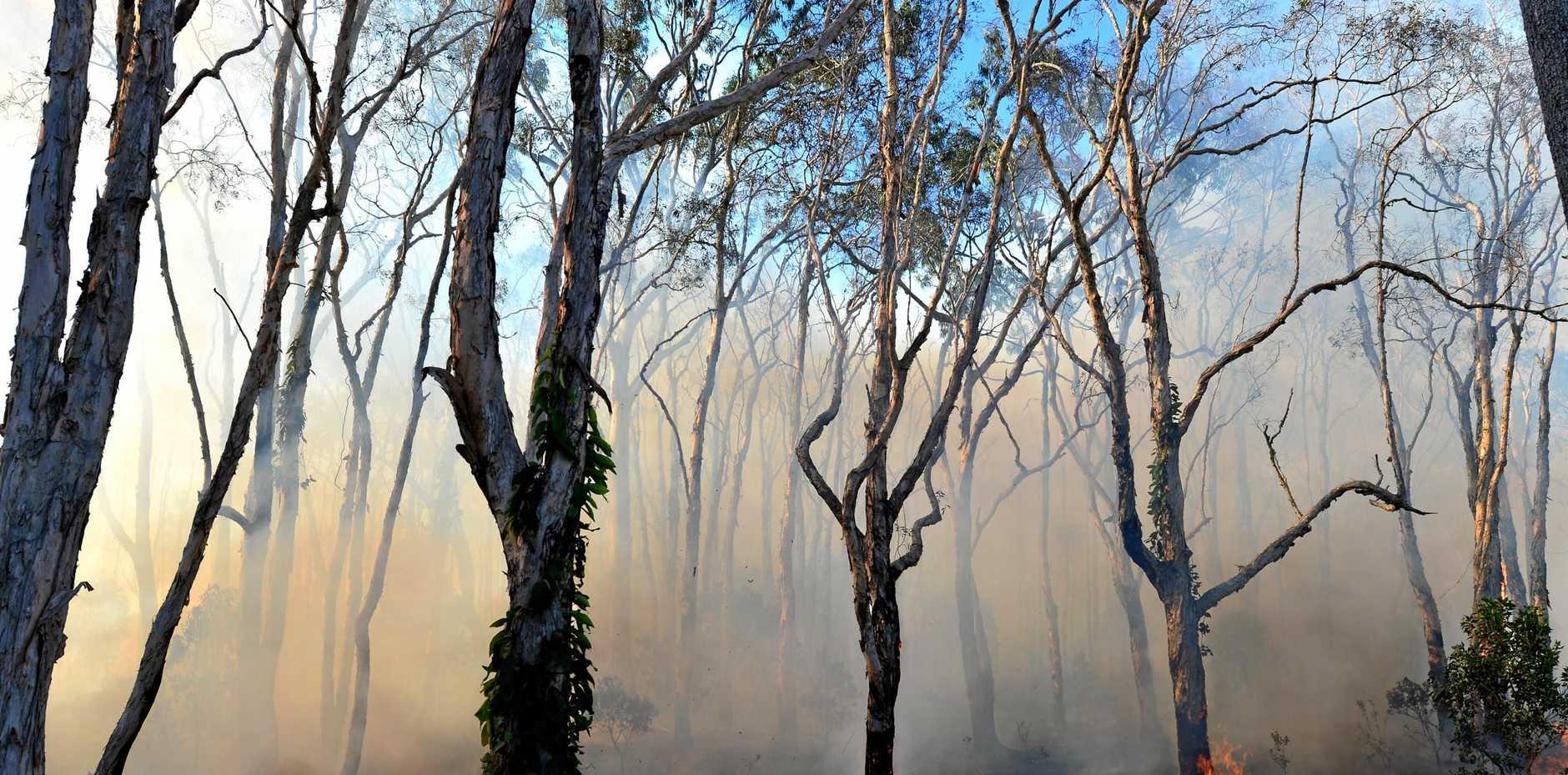 WARNING: The Central Highland region is still at risk of bush fires.
