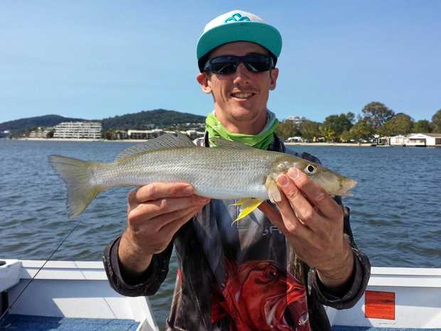 Stann Anderson holding a good-sized whiting.
