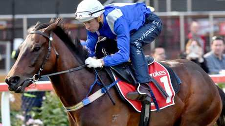 Winx will surpass Makybe Diva has Australian racing's all-time highest prizemoney earner if she can win Saturday's Cox Plate. Picture: Jay Town