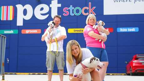 Retailer PETstock has a service that automatically ship regular items to customers without them lifting a finger.