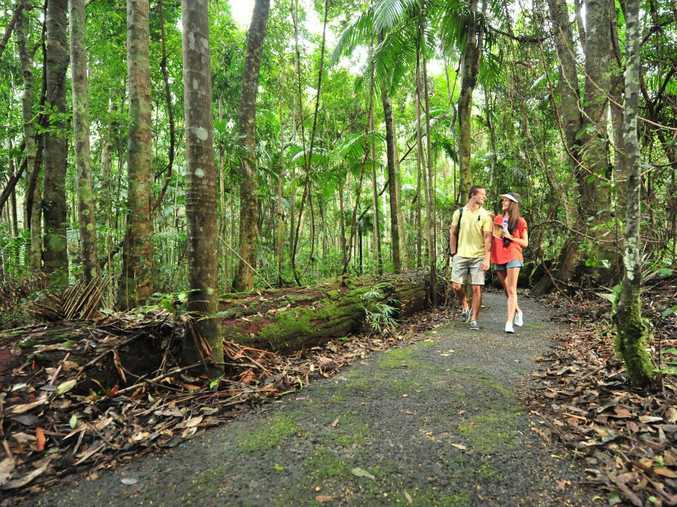 A walk along one of the many hiking trails around the Brisbane region is just what summer ordered.