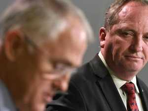 Barnaby Joyce to go to bi-election
