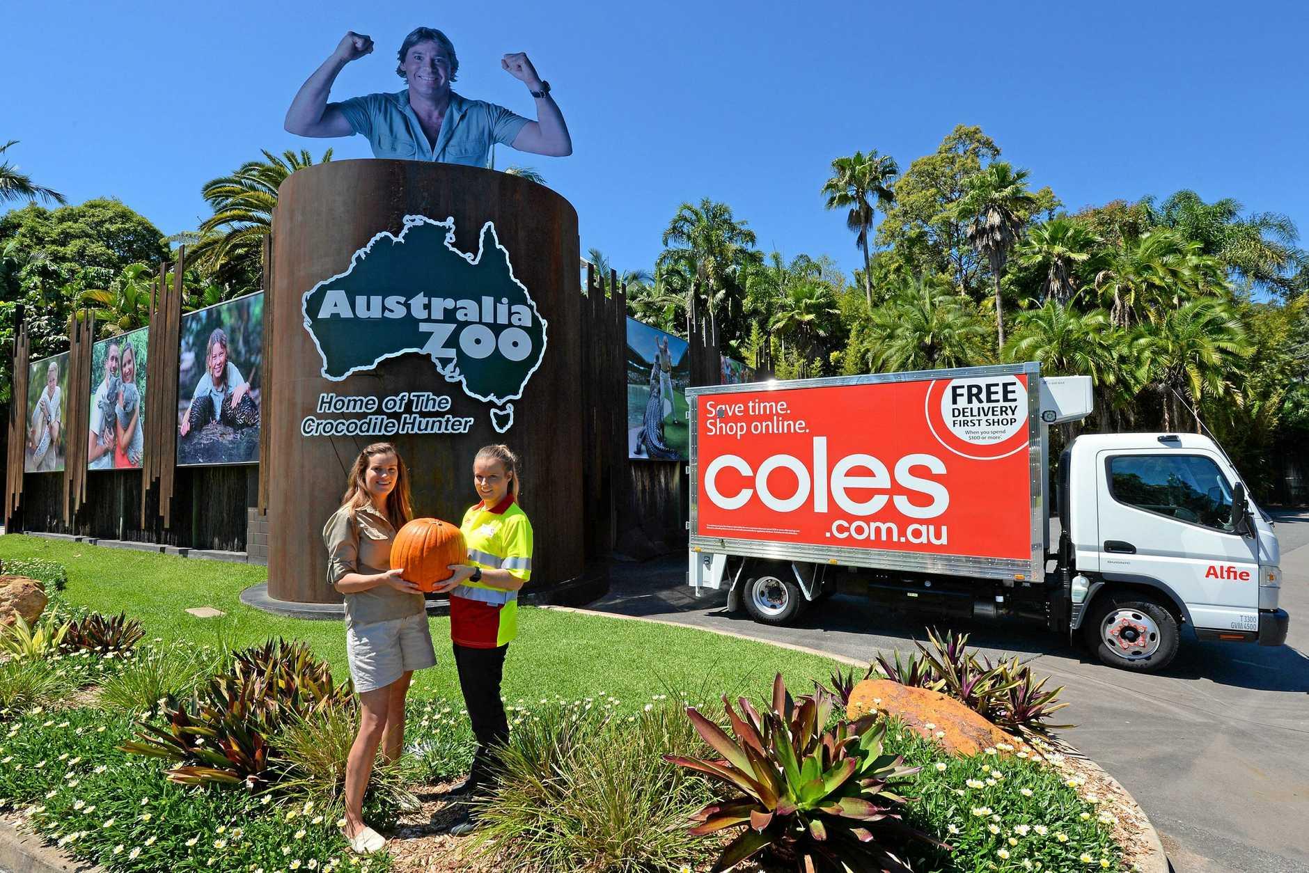 Coles online customer service agent Emma drops off a 150 Halloween pumpkins to Australia Zoo event coordinator Sophie Jeffs (right).