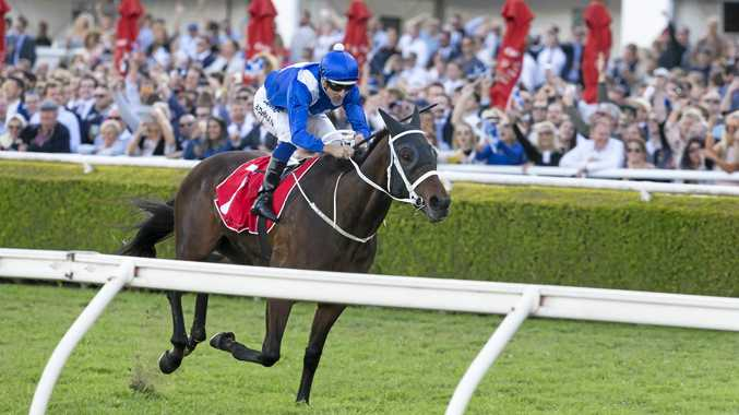 Winx's future should be outlined Friday morning.