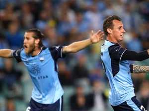 Dominant Sky Blues will click soon: Arnold